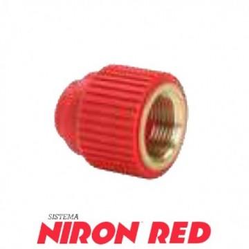 Injerto Niron Red 40-50...